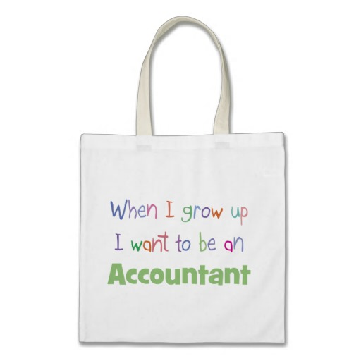 Accountant Bag1