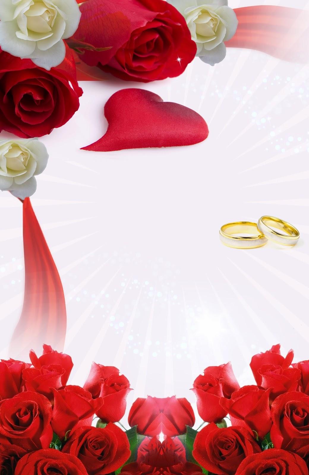 Imagenes de amor y amistad: Imagenes de Rosas rojas