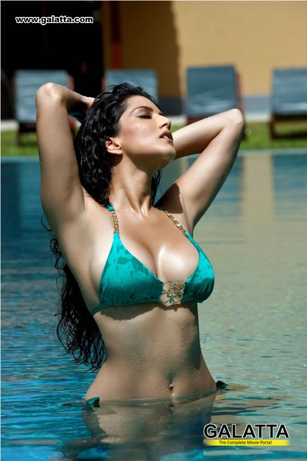Star Fox Krystal Sexy