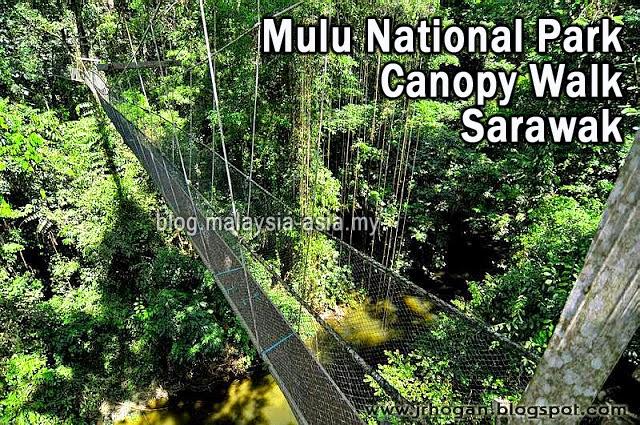 Mulu National Park Canopy Walk Sarawak