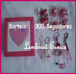 SORTEIO 300 SEGUIDORES BLOG LEMBRART EUNICE