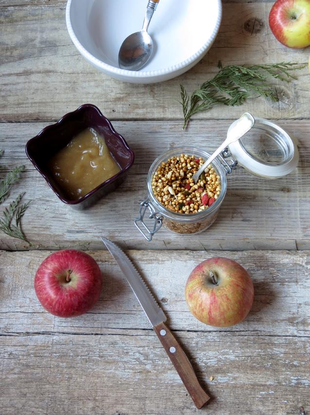 papas de aveia e maçã
