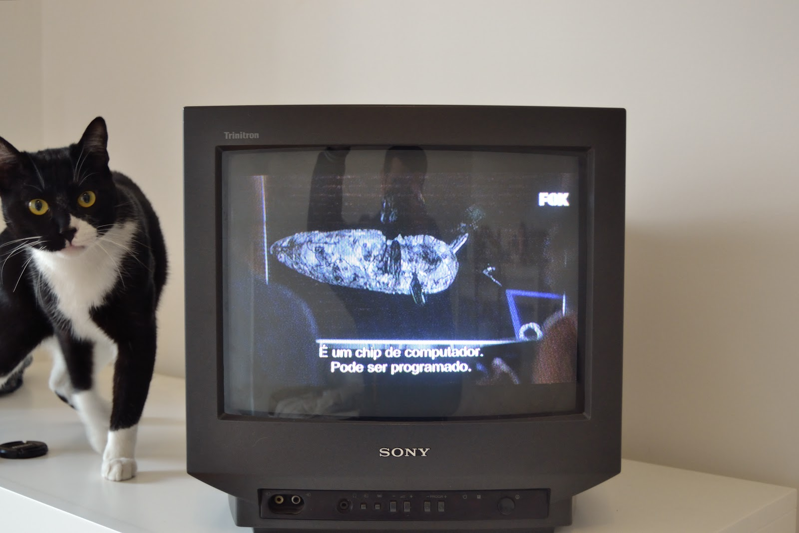 sony tv small. tech gore galore: disassembly and repair: sony triniton crt tv model kv-14m1e tv small