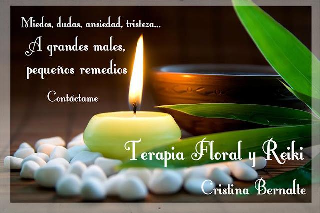 enfermedad flor bach:
