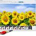 برنامج مجانى لتحرير وتعديل ومعالجة وتصحيح الصور وإضافة تأثيرات مميزة عليها MAGIX Photo Designer 7 free