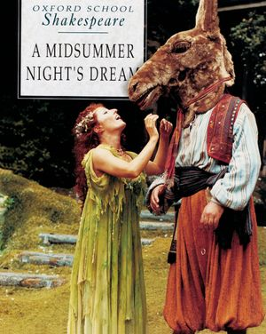 a review of the story a midsummer nights dream A midsummer night's dream is a very complicated play, and can get very silly at times, and this film is surprisingly faithful to the play yes, there was an attempt to partially modernise it, therefore the script wasn't as good as it could have been.