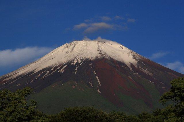 富士山の画像 p1_13