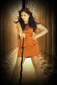 Nikesha Patel latest sizzling portfolio-thumbnail-4