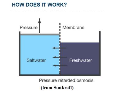 Osmosis in potatoes diagram