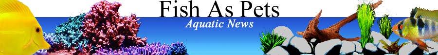 Fish as Pets; aquarium & pond articles, aquatic editorials, LFS, Yahoo Answers, forums