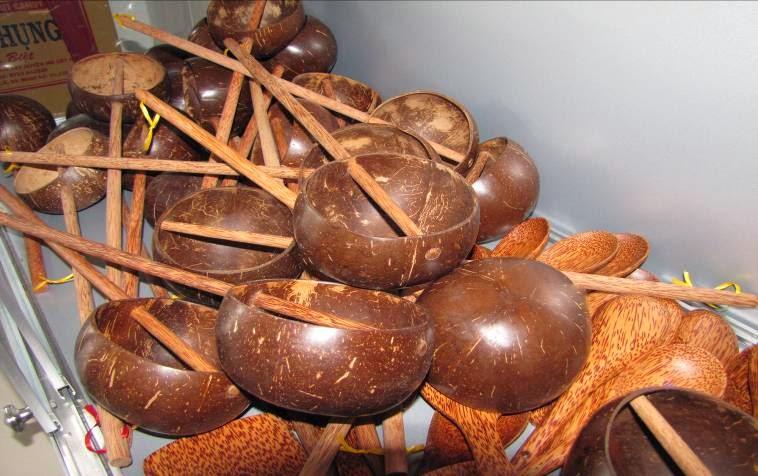 Gáo dừa - Thuyết về cây dừa