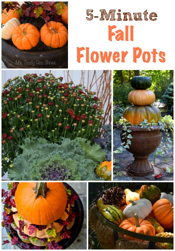 Five-Minute Fall Flower Pots: Super-easy ideas! Ms. Toody Goo Shoes