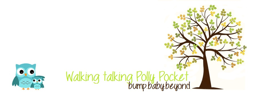 WalkingTalkingPollyPocket