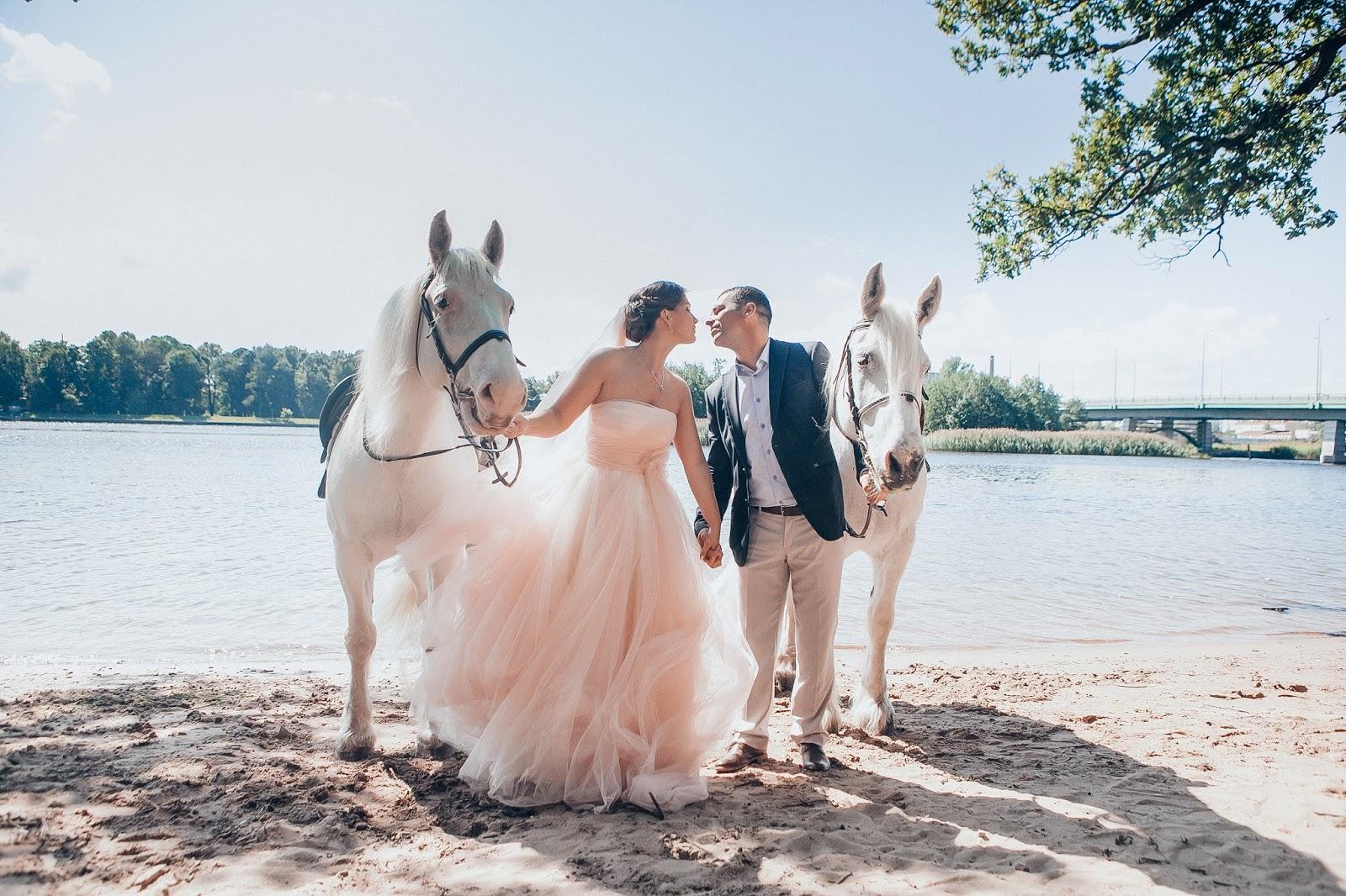 жених и невеста в окружении белых коней