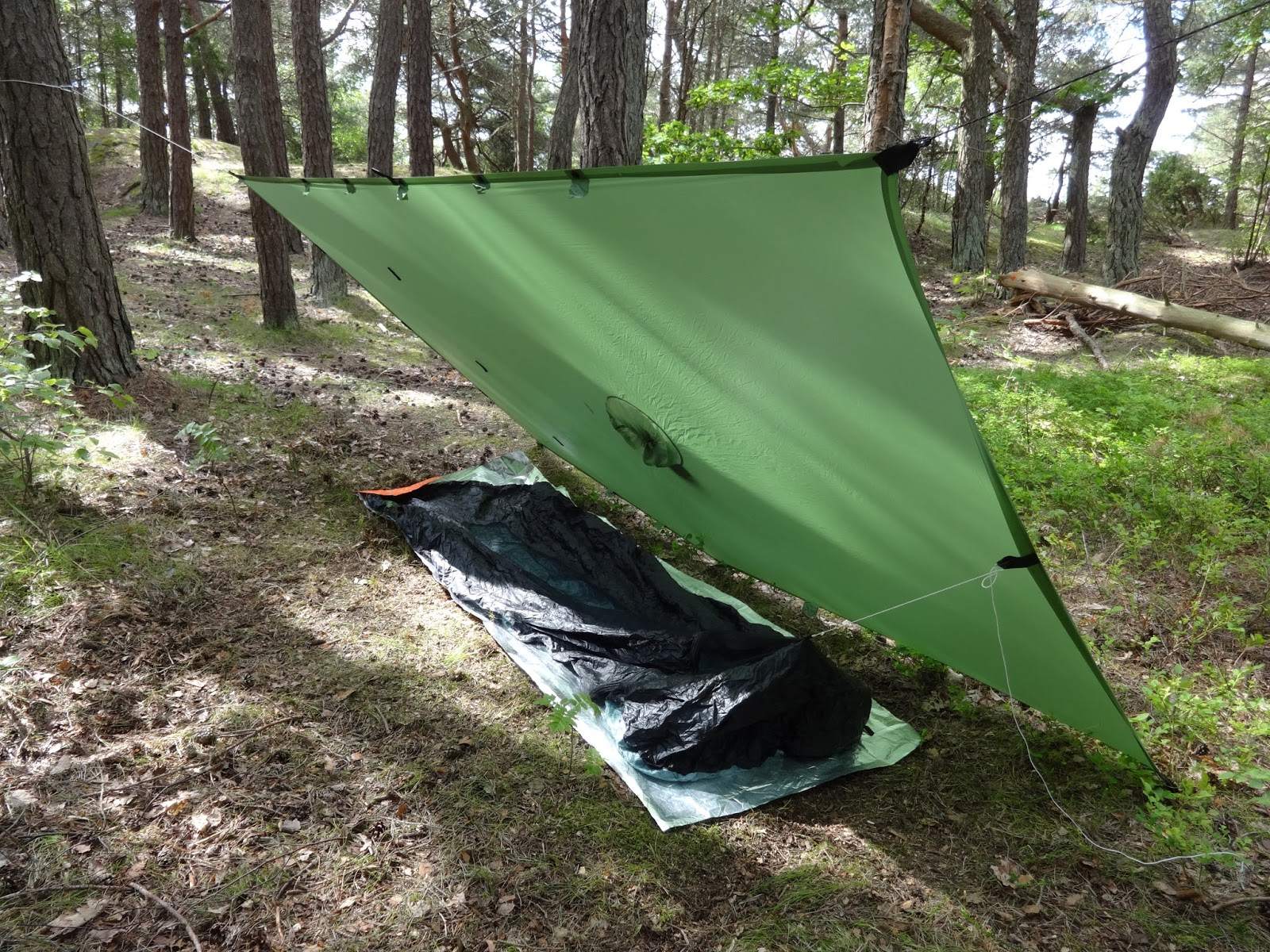 The next review will be my first impressions on the new Dimma bivy which is the one on the bottom in the picture at the top. The Dimma bivy is not listed ... & Cesar and The Woods: Borah Gear Bivies Double Reviews: Long Term ...