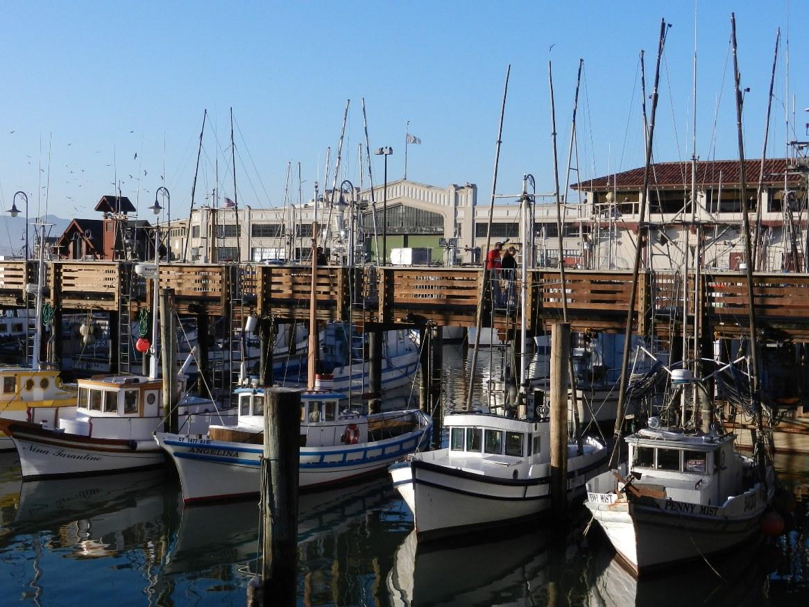 Mny san francisco fisherman 39 s wharf feb 11 for San francisco fishing