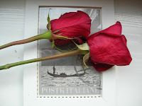 regalar flores para hombres