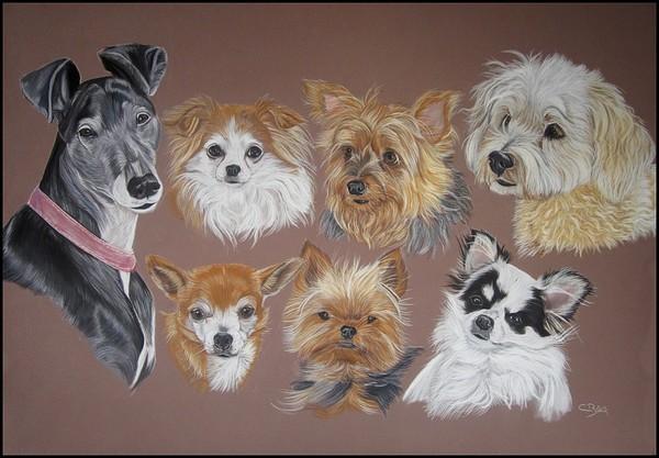 dessins chiens