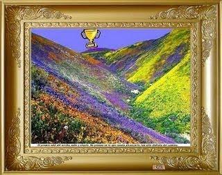 Premio Paisaje