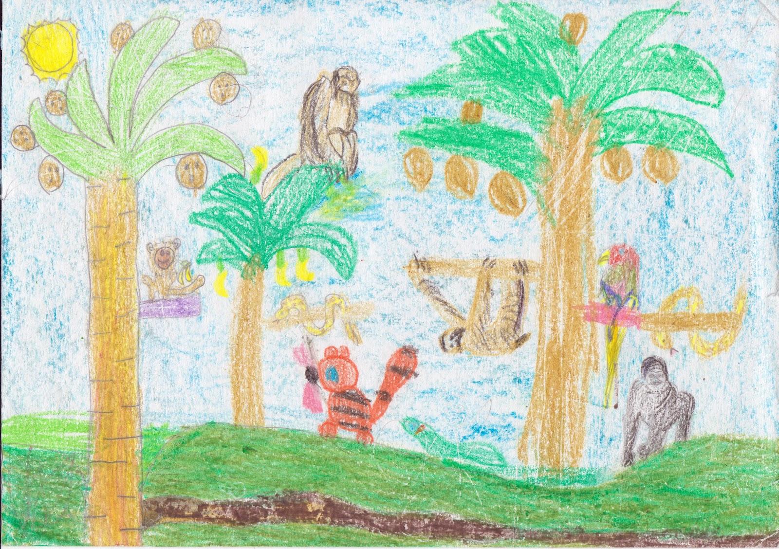 eucology: Tropical rainforest...