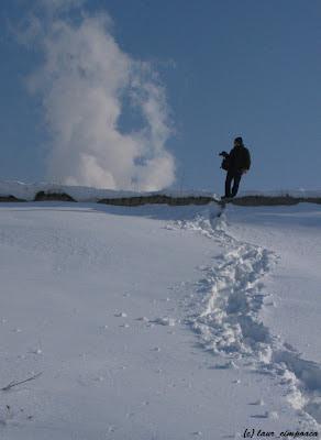 Iarna Lacul Vacaresti Winter Lake Vacaresti