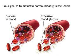 obat herbal penyakit gula kering