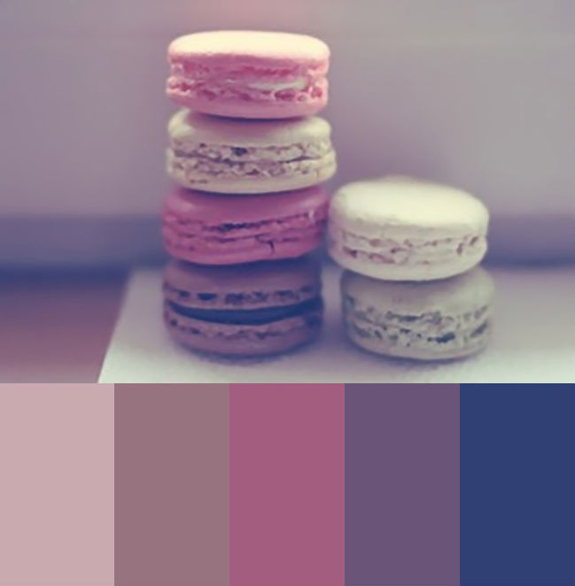 macroon color palette