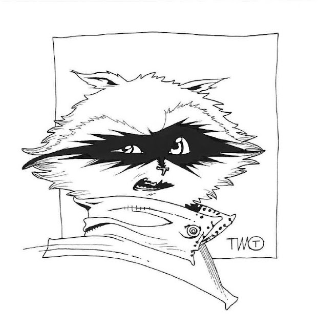 Rocket Raccoon - Timothy Green II