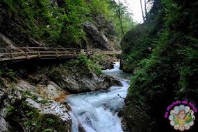 Eslovênia: Desfiladeiro de Vintgar