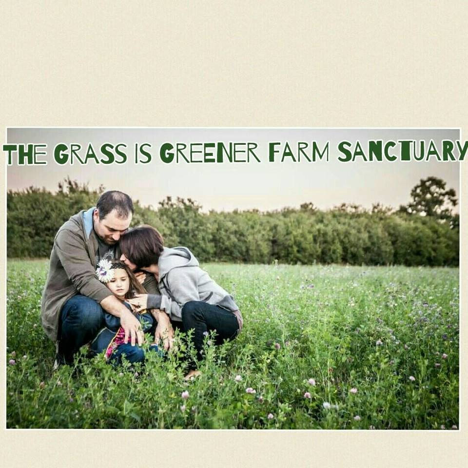 The Grass Is Greener Farm Sactuary