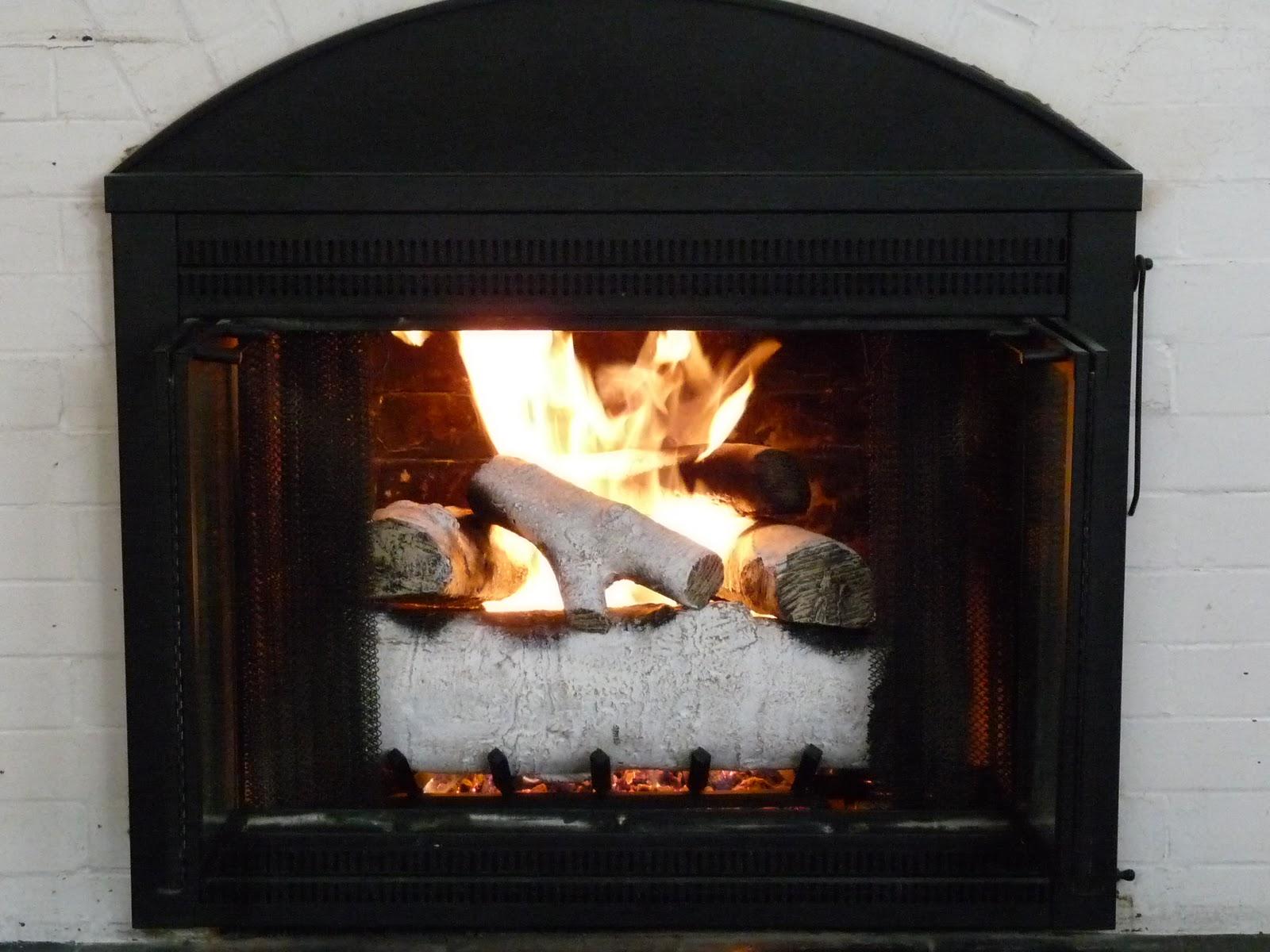 100 Small Propane FireplaceOutdoor Gas Fireplace Kits Nz