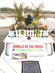 GORILLA ON BOARD! Click the word 'GORILLA' above, or the picture below to find out MORE