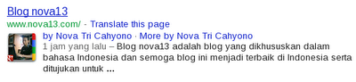 Blog nova13 on Google