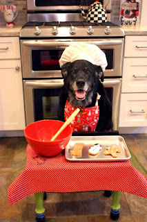 http://cdn.cutestpaw.com/wp-content/uploads/2012/12/l-My-friends-dog-baking-Christmas-Cookies..jpg