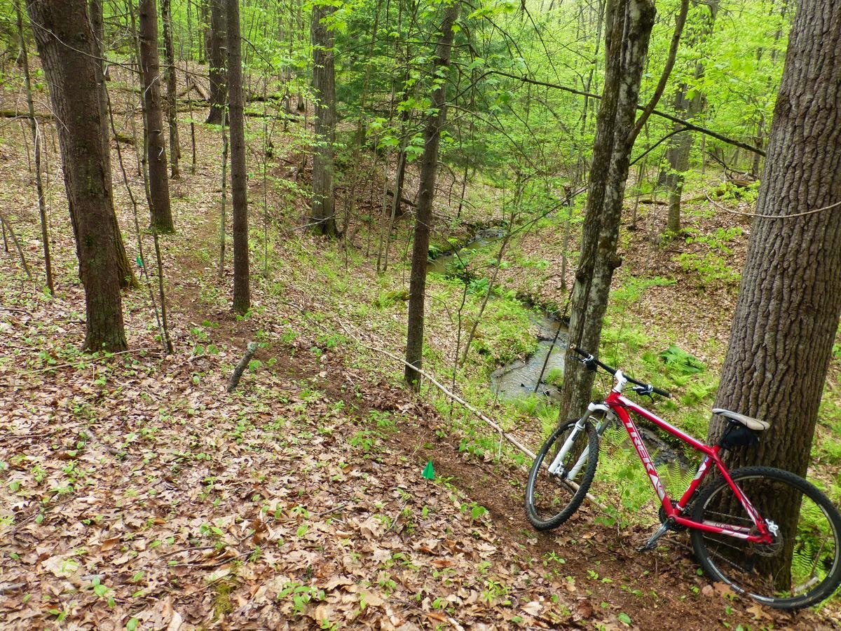 The trails out my back door - several hundred acres of Saratoga County forest and adjacent public lands.  The Saratoga Skier and Hiker, first-hand accounts of adventures in the Adirondacks and beyond, and Gore Mountain ski blog.