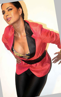 veena malik sizzling to support homosexuality actress pics
