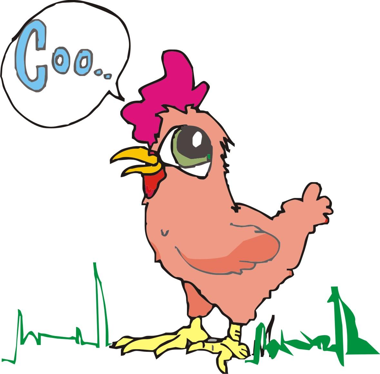 La gallina en caricatura - Imagui