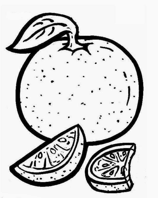 imagens para colorir de laranja - Frutas para colorir Desenhos para Colorir