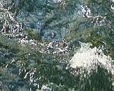 Foto cover Advies Ecosysteemdiensten grondwater
