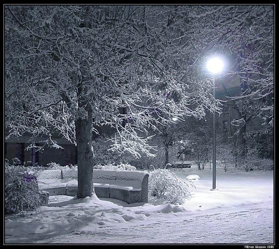 Зима-зима все сделает сама