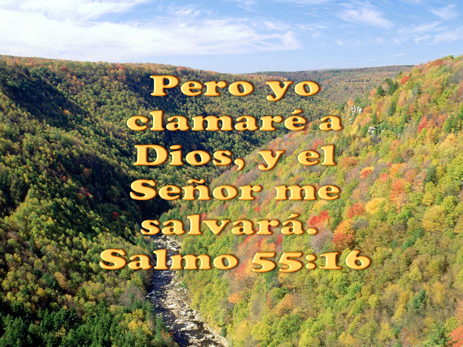 Biblia, paisajes y maravillas: Salmo 91:9-11