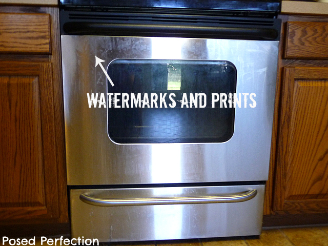 Posed Perfection: Cleaning Stainless Steel Appliances