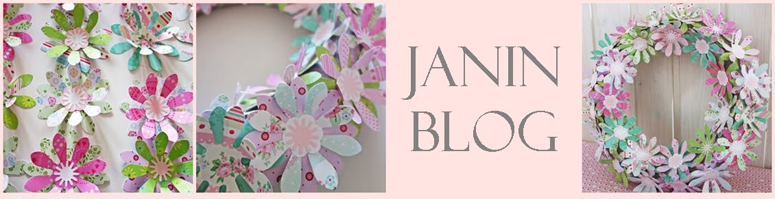 Janin  blog