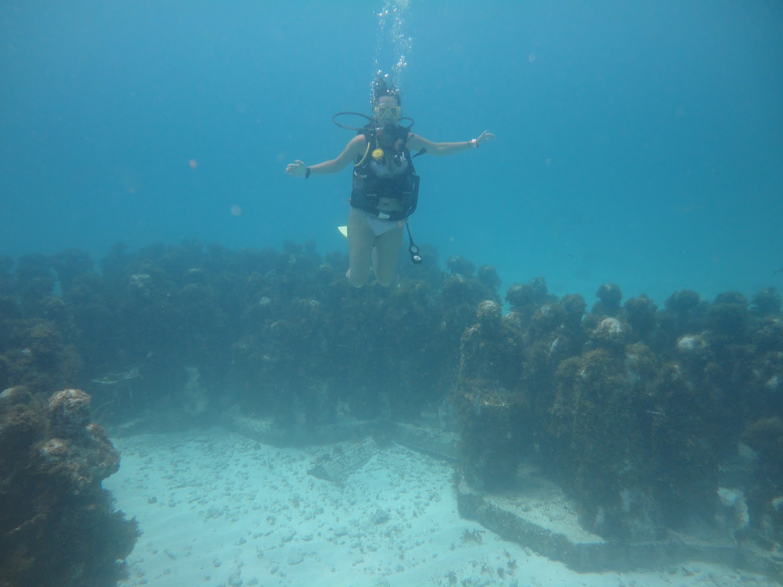 real underwater titanic pictures. Beautiful Underwater Throughout Real Underwater Titanic Pictures