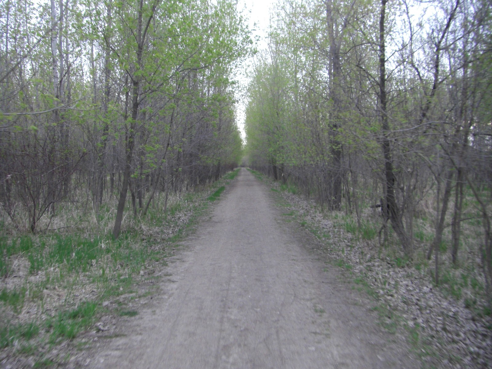 Mn Bike Trail Navigator Trail Photo Gallery Fort