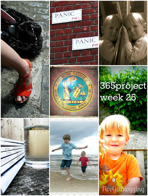 Five Go Blogging 365Project week 25