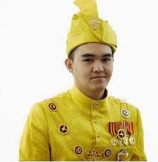 Raja Muda Selangor -  Tengku Amir Shah