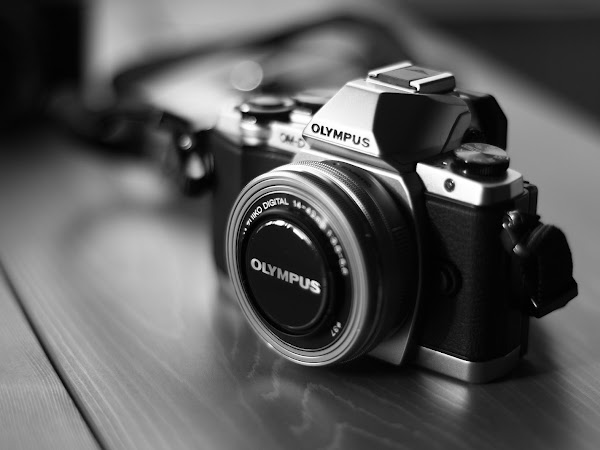 10 High-Quality Photo Blogger Instagram Accounts You Need To Follow