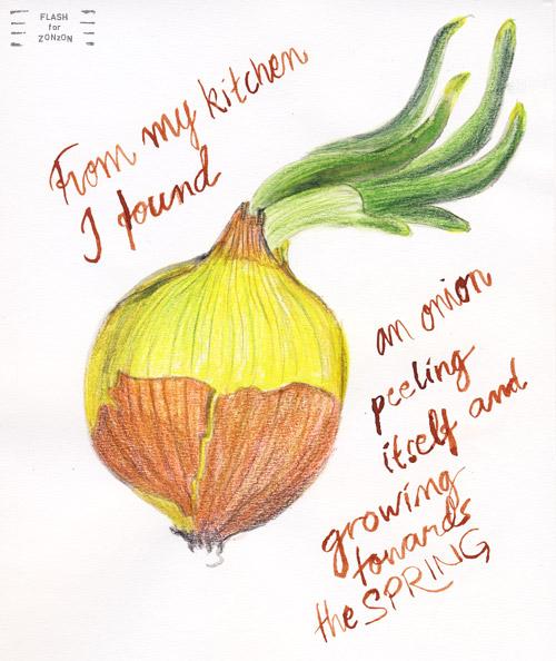 Spring Awakening, Spring Onion.