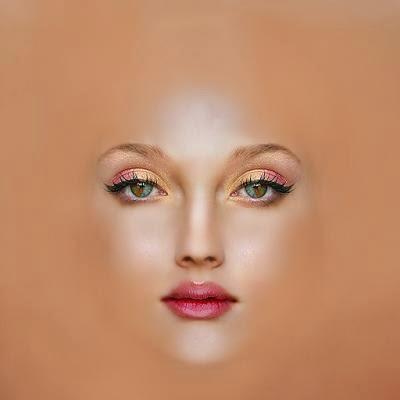 Top 3 blog posts 3ds max set blueprints face skin for 3ds max face modeling
